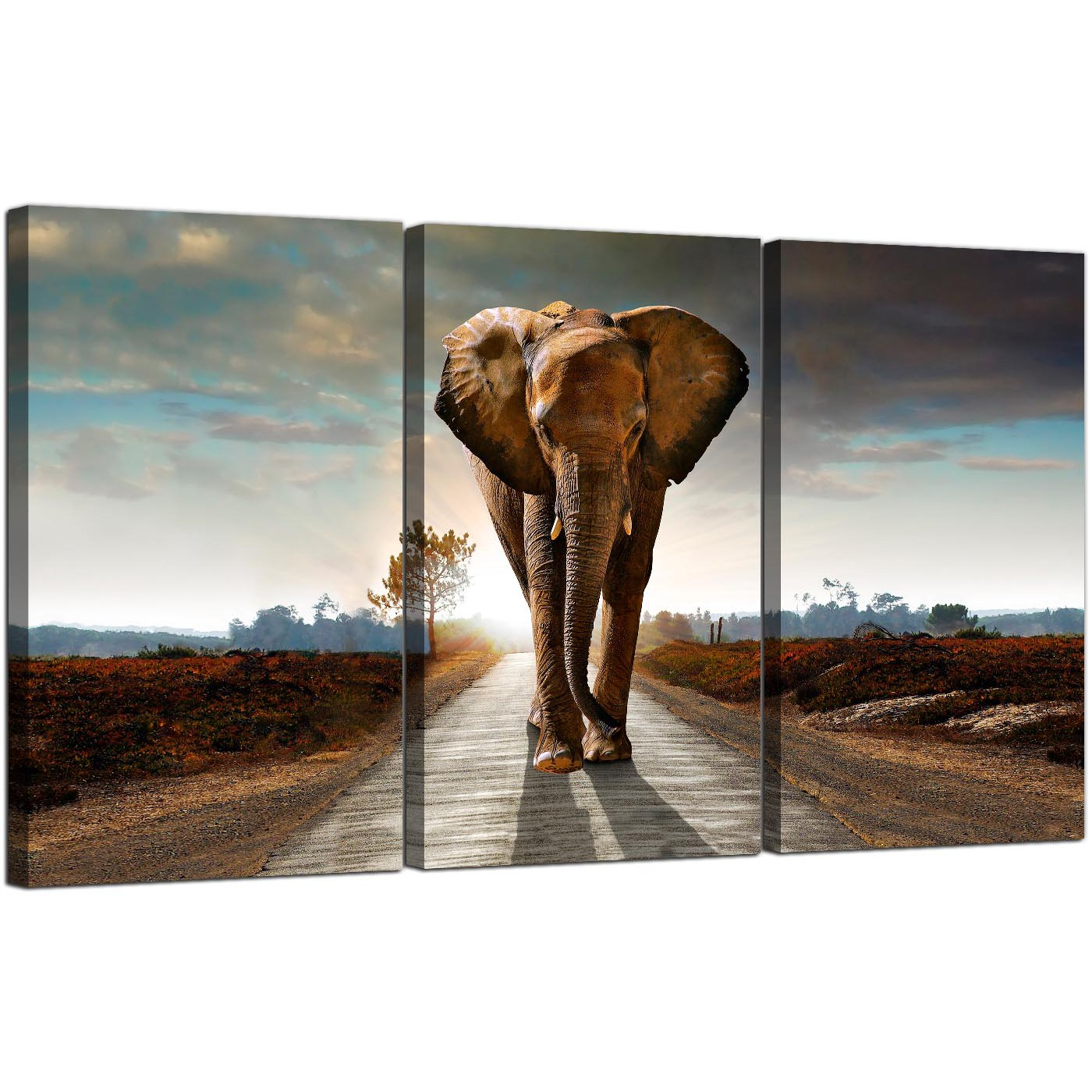 Large African Elephant Canvas Prints 3 Part for your Hallway : 3 panel elephant canvas prints uk study 3209 from wallfillers.co.uk size 1400 x 1400 jpeg 337kB