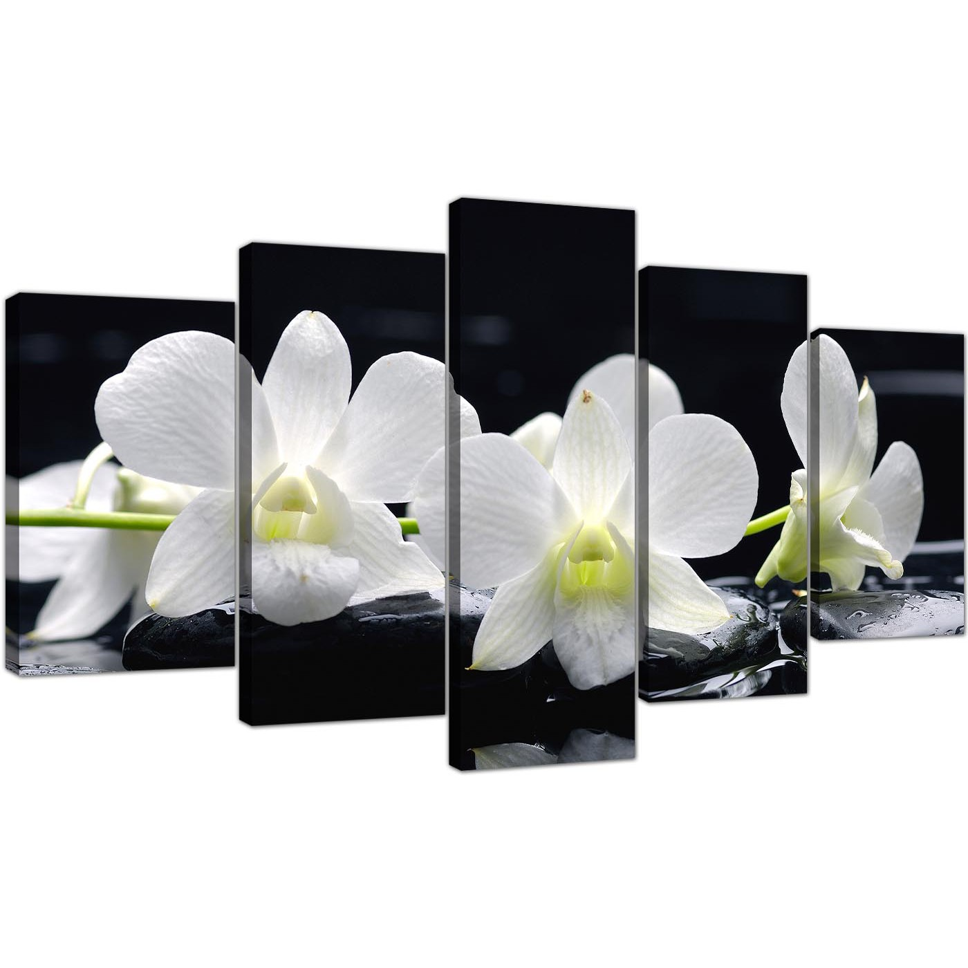 extra large orchids canvas art  panel in black  white - blackwhite living room five part set of lily display gallery item