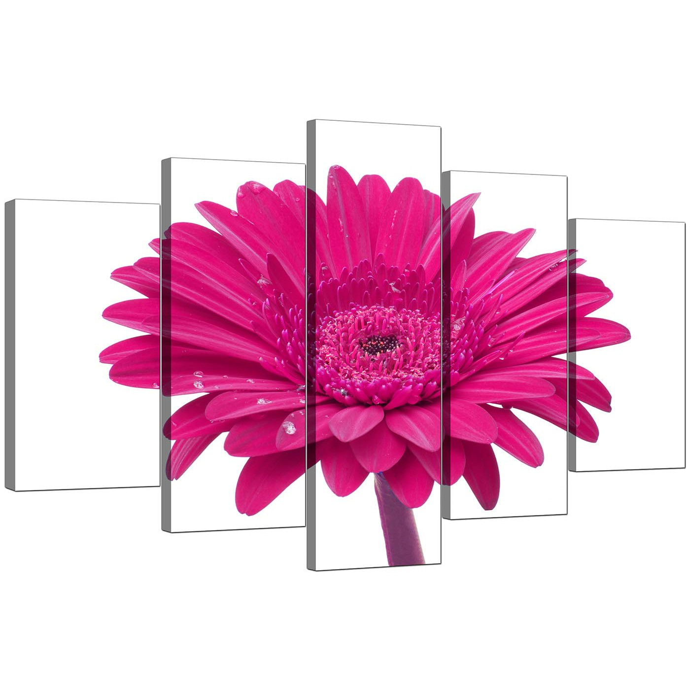 Flower Canvas Wall Art extra large flower canvas wall art 5 piece in pink