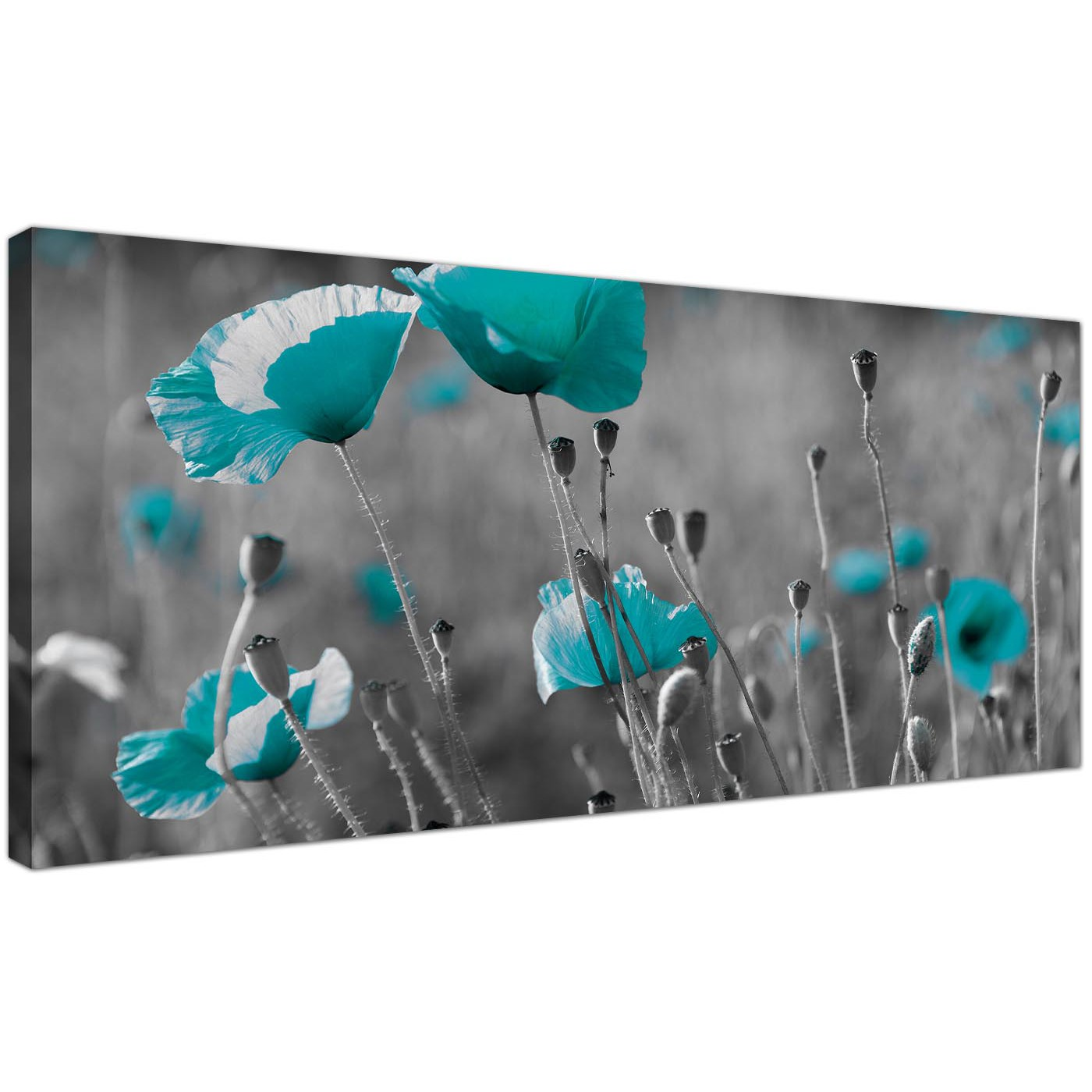 modern black and white canvas prints of teal poppies. Black Bedroom Furniture Sets. Home Design Ideas