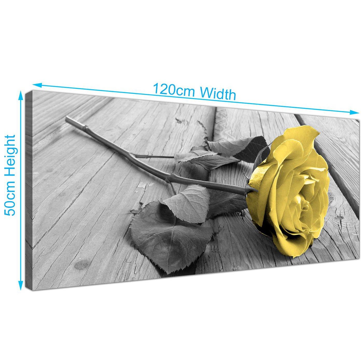 Modern canvas wall art of yellow and grey rose in black for Cheap black and white prints