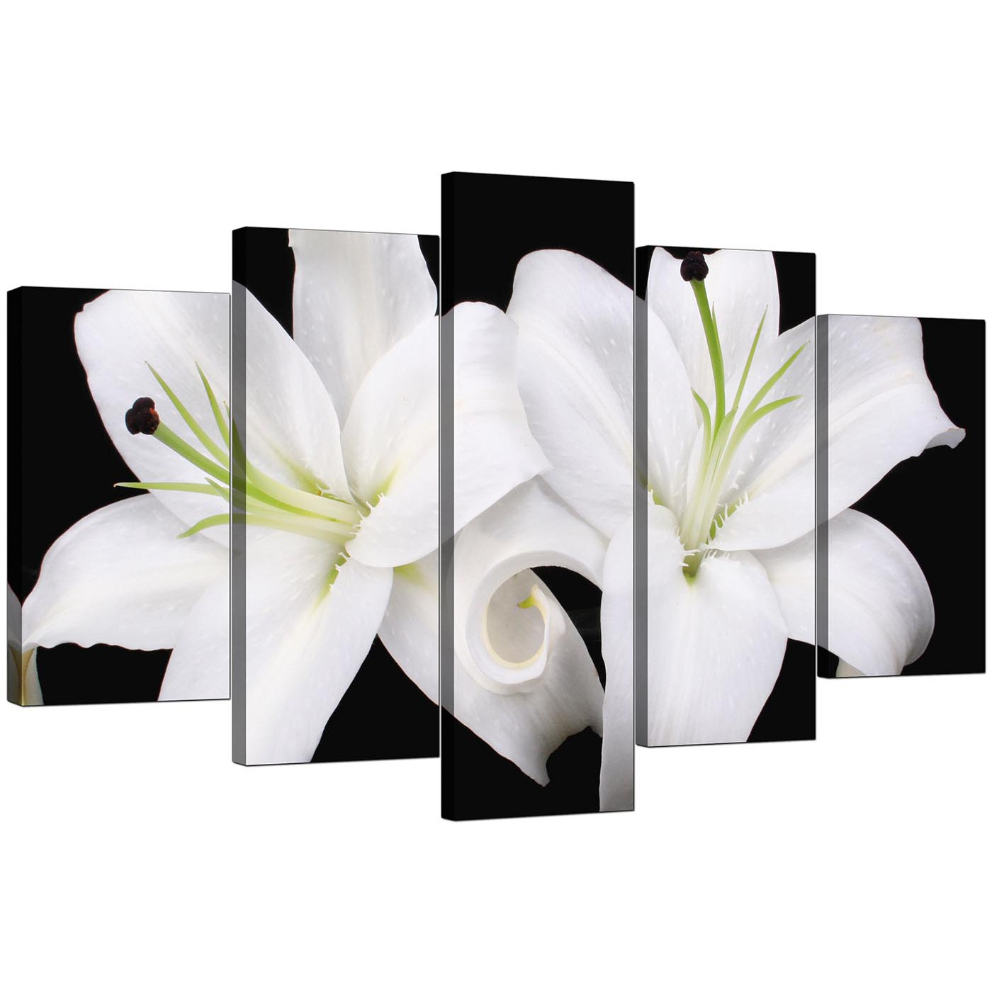 Extra large lilies canvas prints uk 5 piece in black white for Cheap black and white prints