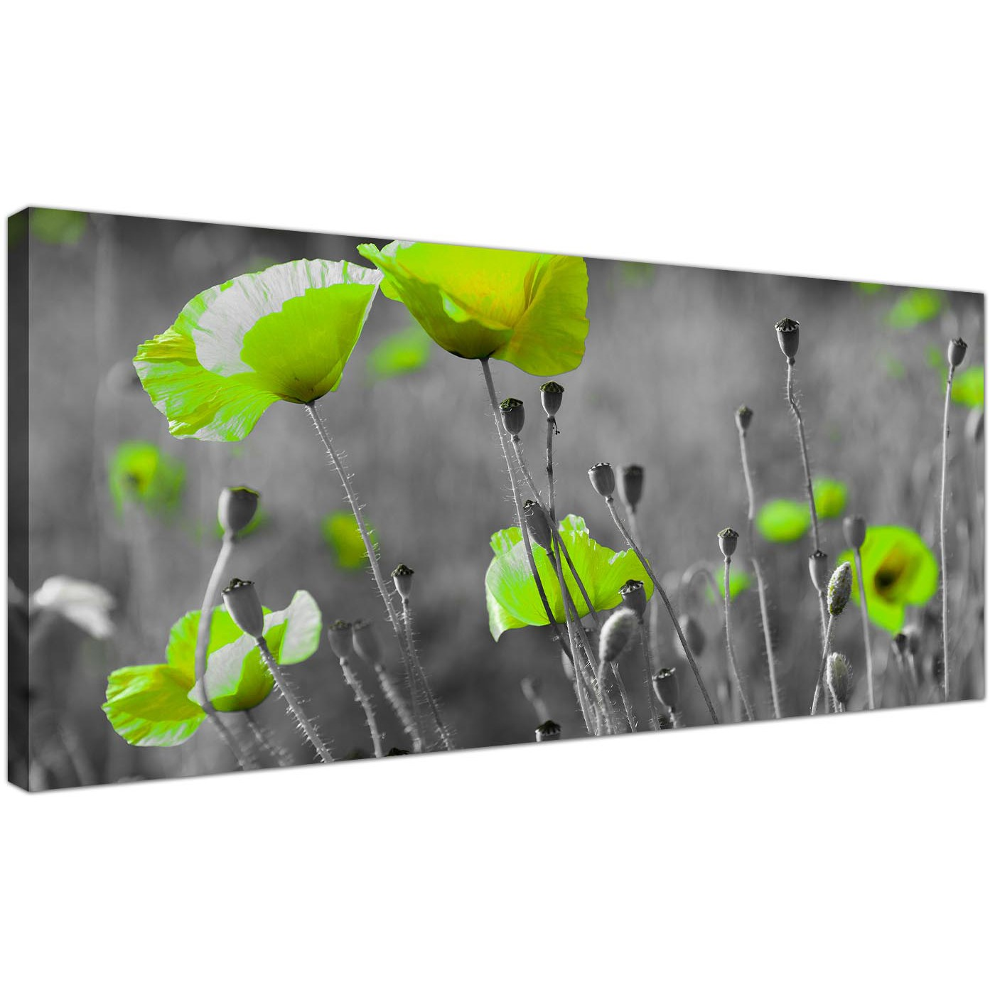 Cheap black and white canvas wall art of green poppies for Lime green wall art