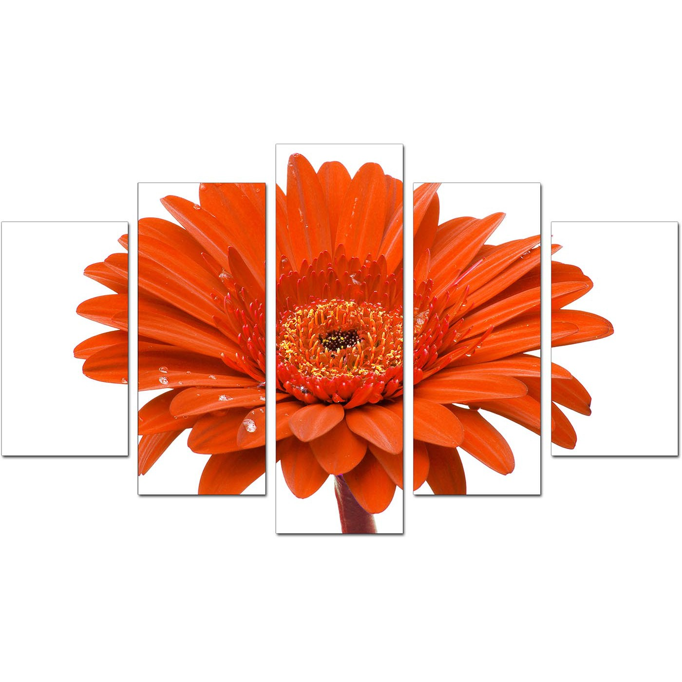 Extra large flower canvas prints 5 part in orange orange bedroom set of five of daisy display gallery item 1 set of dhlflorist Image collections