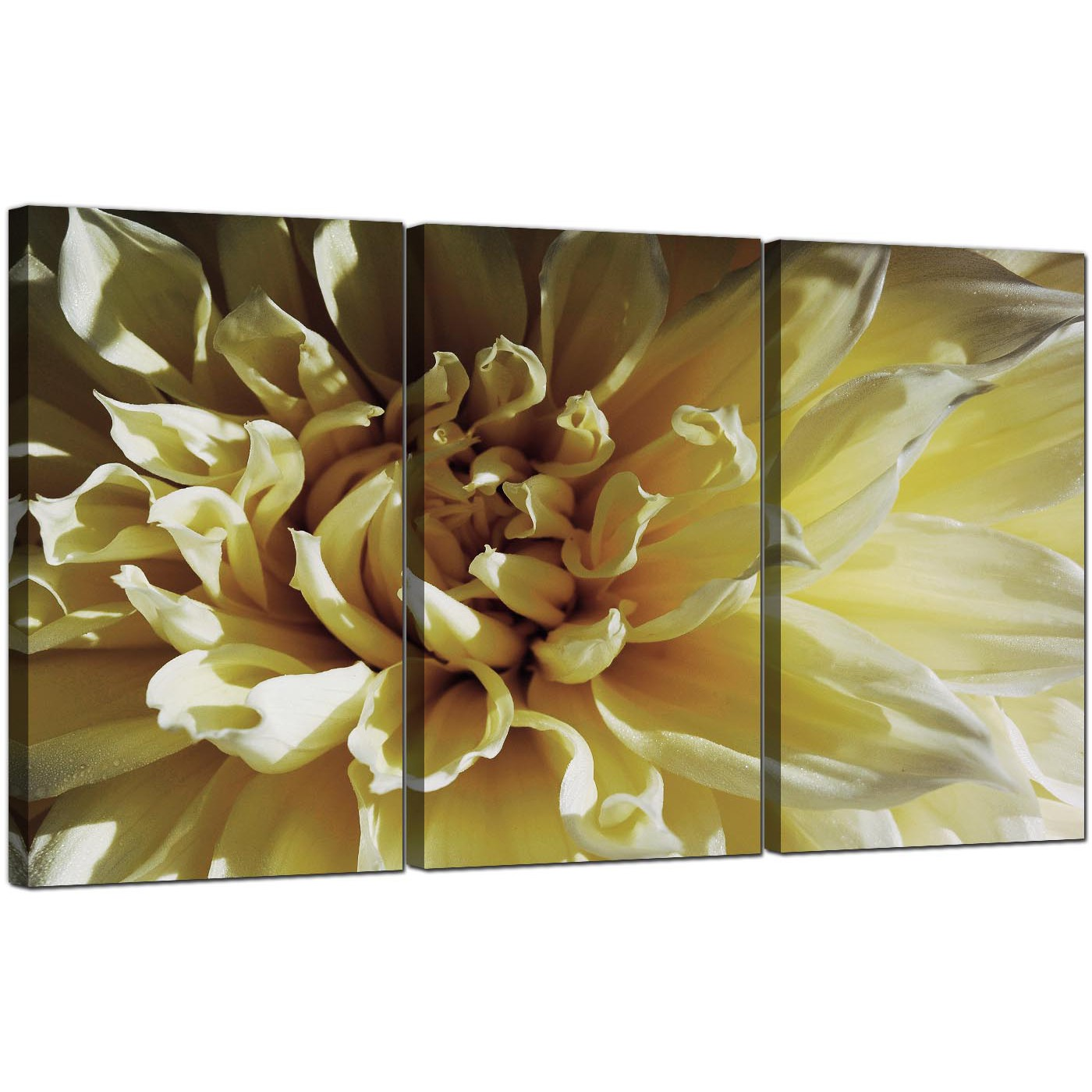 Magnificent 20+ Flower Canvas Wall Art Design Decoration Of Jardin ...