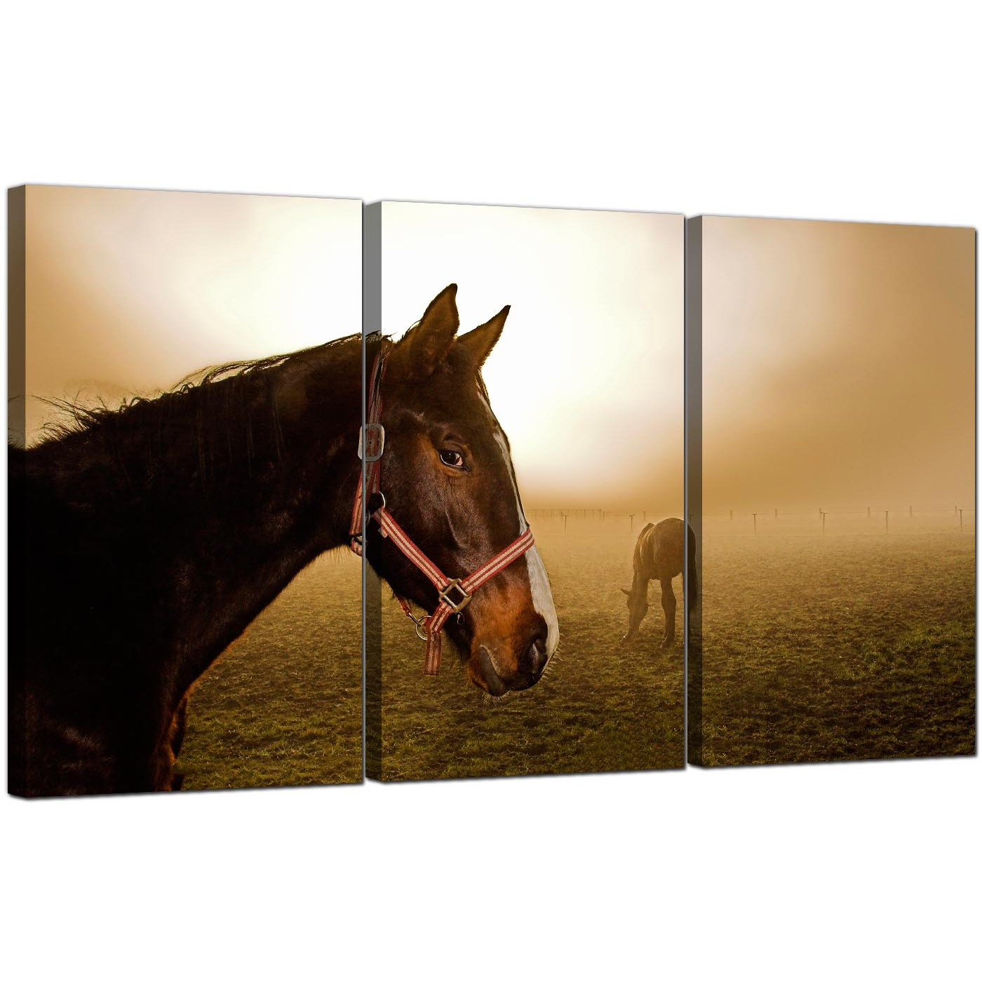 Display Gallery Item 5 3 Panel Countryside Canvas Art Misty Dawn 3130 6