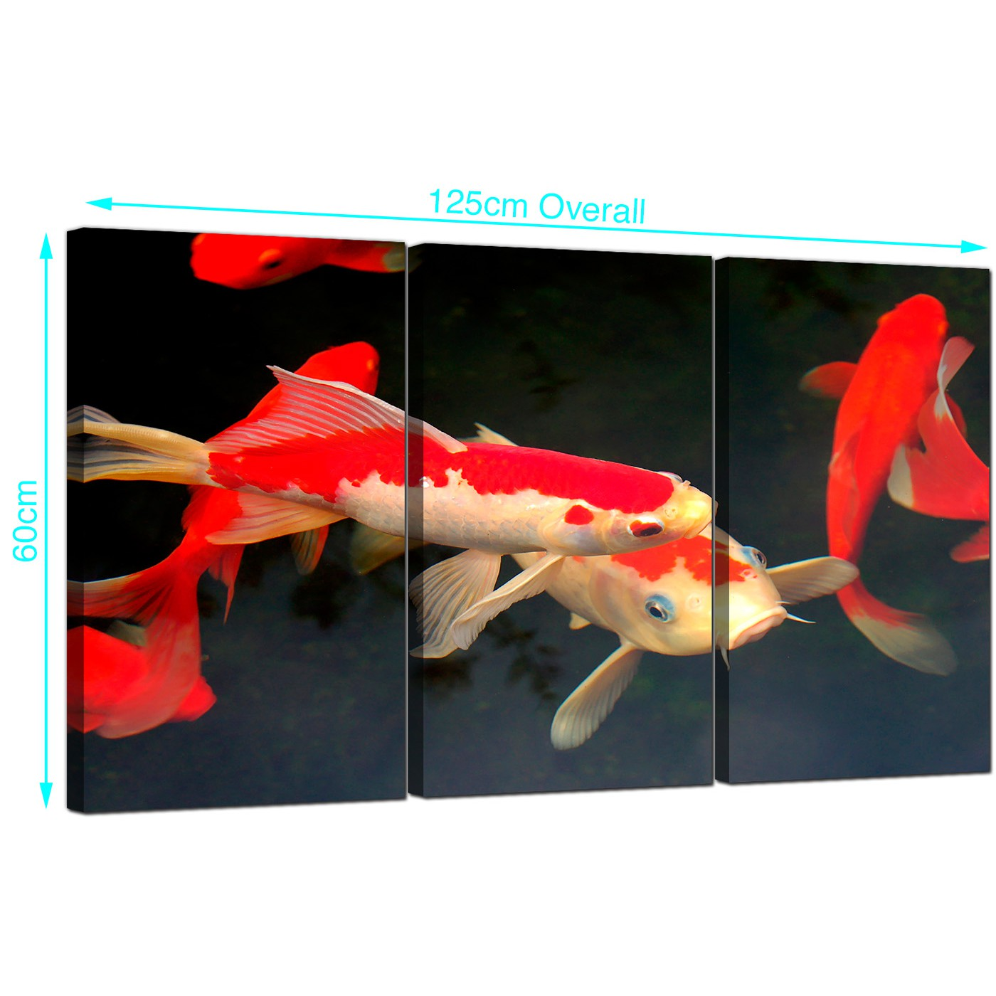 Cheap koi carp canvas prints uk set of 3 for your living room for Koi prints canvas