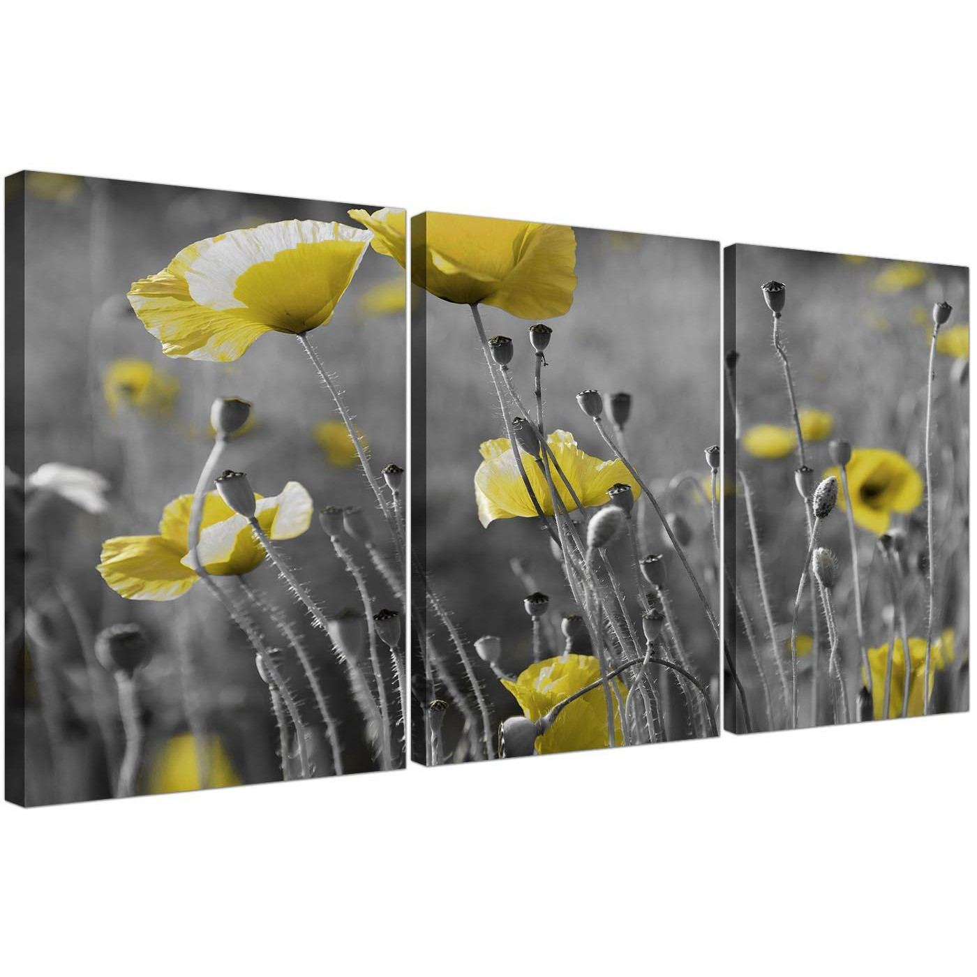 Wall Art Sets For Living Room Black And White Canvas With Grey And Yellow Poppies Wall Art
