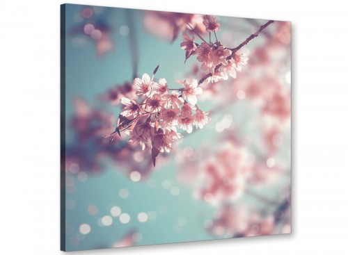 cheap duck egg blue pink shabby chic blossom floral canvas modern 49cm square 1s280s for your bedroom