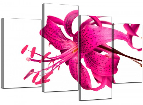 4 Part Set of Cheap Pink Canvas Prints