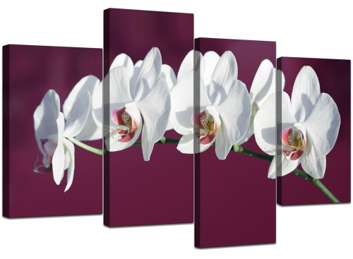 Set Of Four Living-Room Plum Canvas Picture