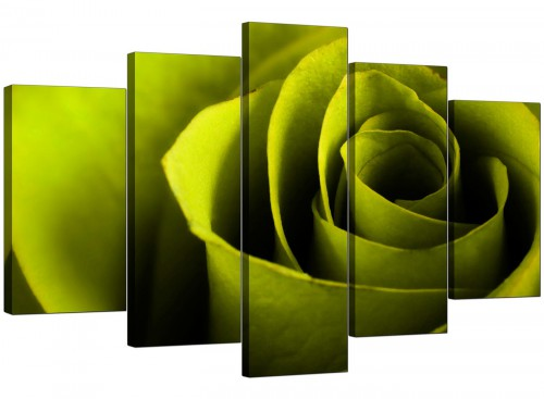 Set Of Five Living-Room Green Canvas Pictures