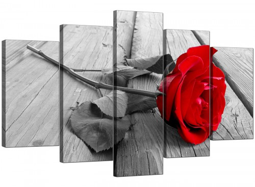 Set Of Five Cheap Red Canvas Pictures