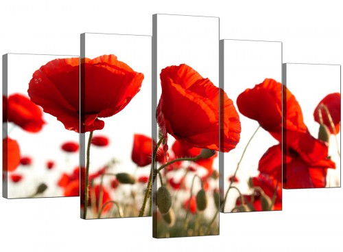 Set Of 5 Living-Room Red Canvas Picture