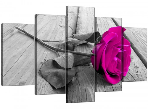 Five Part Set of Living-Room Pink Canvas Wall Art