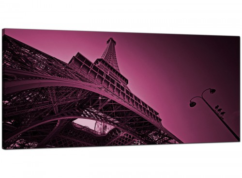 Plum Living Room Panoramic Canvas of France