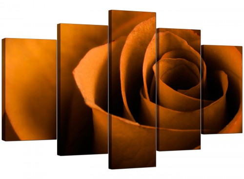 Set Of Five Extra-Large Orange Canvas Wall Art