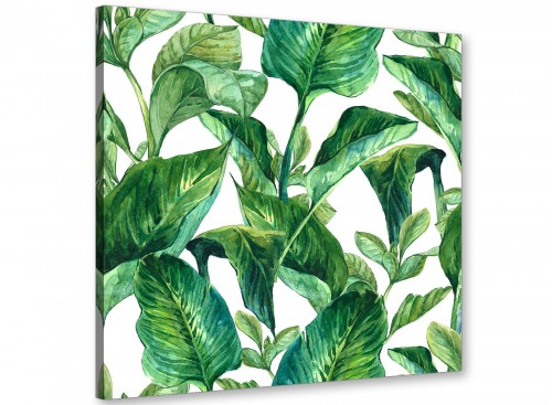 Modern Green Palm Tropical Banana Leaves Canvas Modern 49cm Square 1S324S For Your Living Room