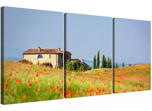 set of 3 floral tuscan hills canvas prints living room 3233