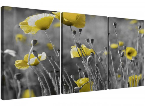 set of 3 poppies canvas wall art living room 3258