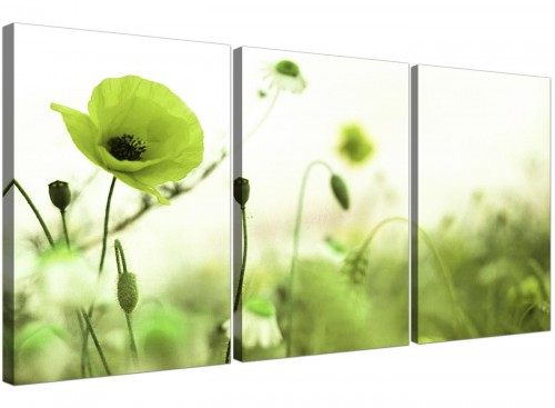 set-of-3-poppy-field-canvas-art-living-room-3273