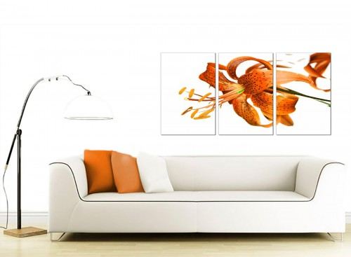 Set of 3 Floral Canvas Pictures 125cm x 60cm 3142