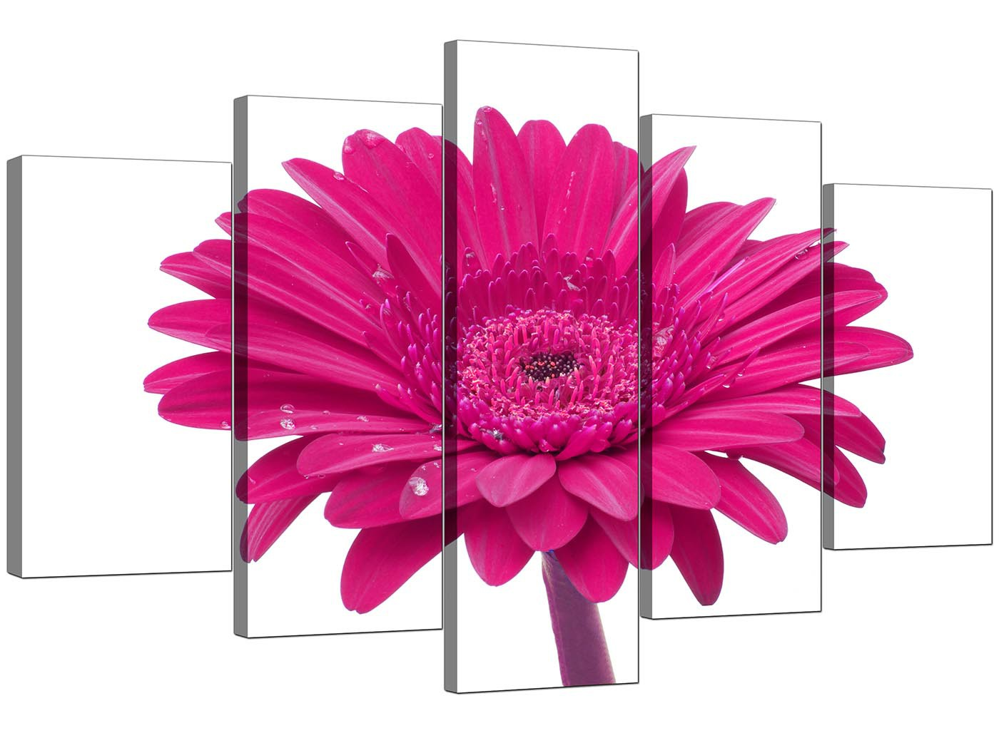 Extra Large Flower Canvas Wall Art 5 Piece In Pink