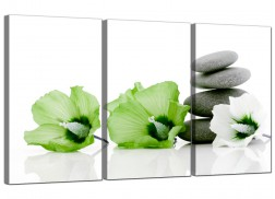 Flowers Canvas Pictures Set of Three for your Living Room