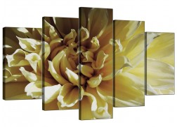 Extra Large Flower Canvas Wall Art 5 Piece in Cream