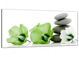 Large Green Canvas Pictures of Flowers and Pebbles