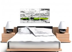 Green Car Canvas Pictures Set of 3 for your Study