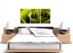 Rose Canvas Pictures Set of Three for your Hallway