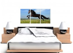 Cheap Horse Canvas Wall Art Set of 3 for your Girls Bedroom