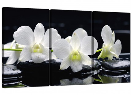 Modern Black and White Orchid Flower Floral Canvas - 3 Panel - 125cm - 3051