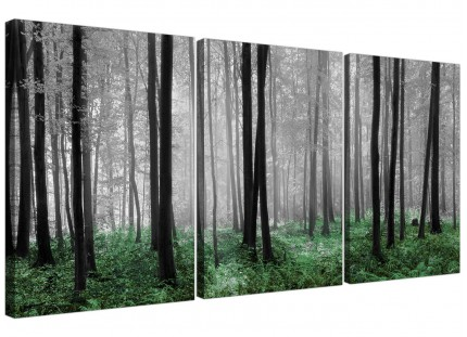 Green Forest Woodland Trees Canvas Pictures 3 Panel Wall Art
