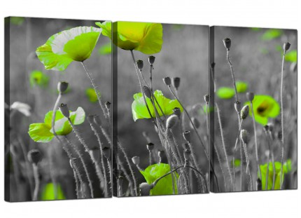 Modern Lime Green Poppies Flower Grey Black Floral Canvas - 3 Set - 125cm - 3138