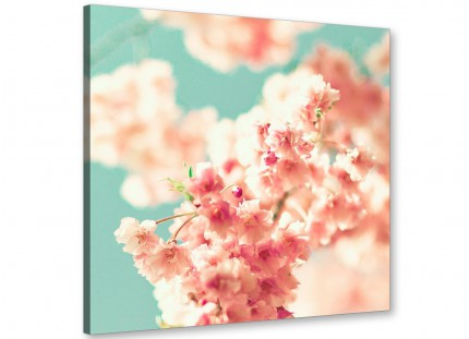 Japanese Cherry Blossom Shabby Chic Pink Blue Floral Canvas Modern 49cm Square - 1s288s