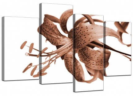 Brown Tiger Lily Flower on White Floral Canvas - Multi 4 Panel - 130cm - 4055