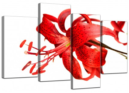 Red Tiger Lily Flower on White Floral Canvas - Split 4 Piece - 130cm - 4052