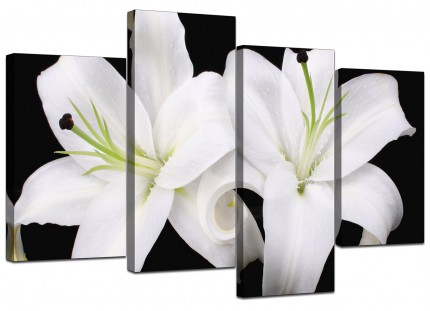 Black White Lily Flower Floral Canvas - Multi 4 Part - 130cm - 4128