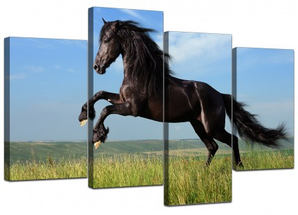 Black Jumping Horse in Field Canvas - Split 4 Set - 130cm - 4129