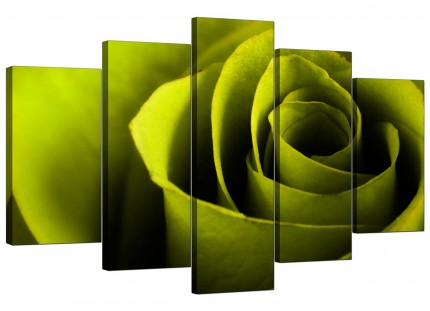 Extra Large Lime Green Rose Petal Flower Floral Canvas - 5 Set - 160cm - 5110