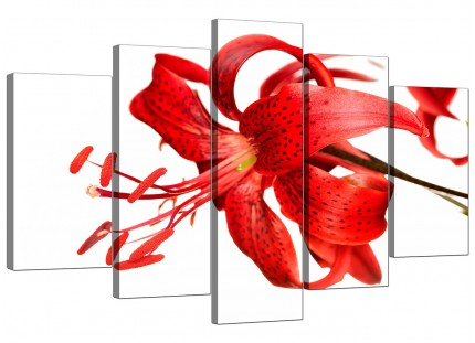 Extra Large Red Tiger Lily Flower on White Floral Canvas - 5 Set - 160cm - 5052