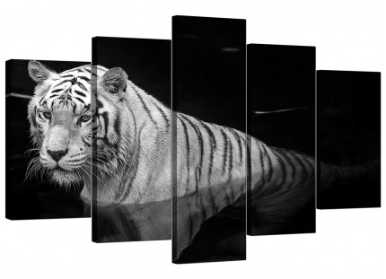 Extra Large Tiger Canvas Prints 5 Piece in Black & White