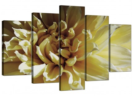Extra Large Cream Chrysanthemum Flower Floral Canvas - Set of 5 - 160cm - 5104