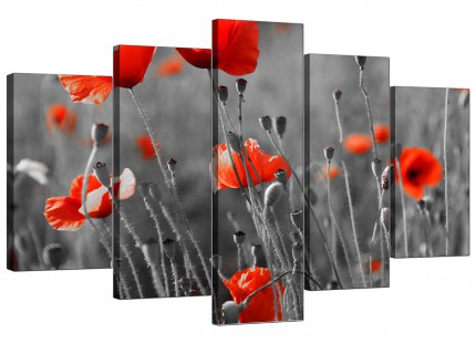 Red Poppy Black White Flower Poppies Floral XL Canvas - Set of 5 - 160cm - 5135