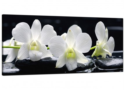 Large Black and White Orchid Flower Floral Modern Canvas Art - 120cm - 1051