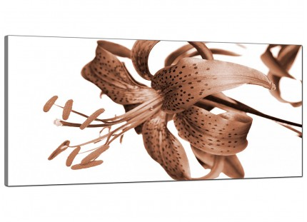 Large Brown Tiger Lily Flower on White Floral Modern Canvas Art - 120cm - 1055