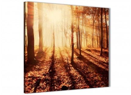 Canvas Pictures Autumn Leaves Forest Scenic Landscapes - Trees - 1s386s Orange - 49cm Square Wall Art
