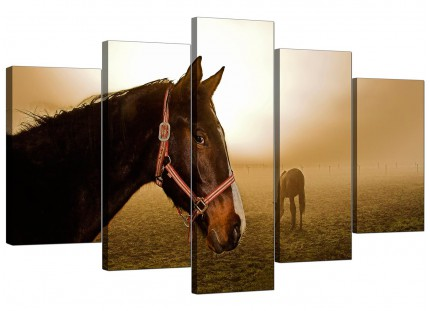 Extra Large Brown Horse Mare and Foal Sunrise Canvas - Set of 5 - 160cm - 5130